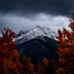 Trübes und kühles Herbstwochenende