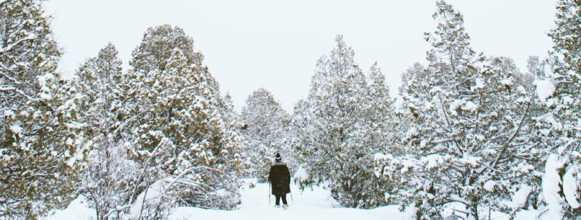 Der November geht winterlich Erster Schnee im Flachland