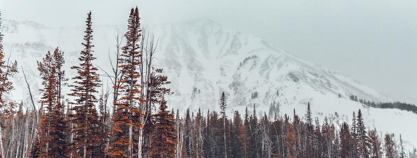 Zuvor föhnig und bis zu 17 Grad ab Sonntag strenger Frost im Gebirge