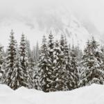 Viel Neuschnee in den Nordalpen Lokal 50 Zentimeter möglich danach vorübergehend Tauwetter