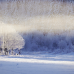 Februar 2018 Kalt trüb und im Süden schneereich