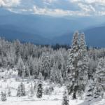 Meteorologischer Frühlingsbeginn rekordverdächtig kalt