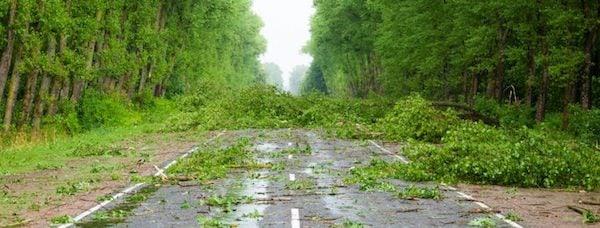 UBIMET-Keep-Roads-Open-Strong-Wind