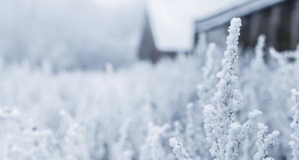 Auf Schnee folgt Kälte