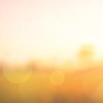 UBIEMT-Vom Sommer in den Herbst und wieder zurück