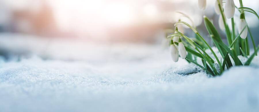 UBIMET: Am Samstag nochmals bis zu 17 Grad, danach folgt in den Alpen Schnee